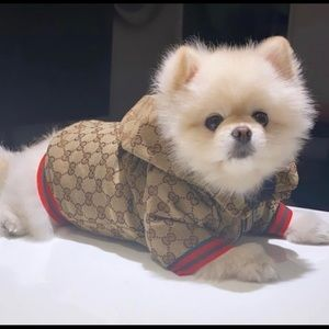 Brand New small size doggy jacket